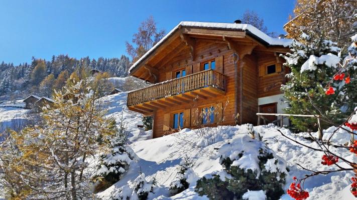 Chalet-Salomon-Schnee2-2016-11-12